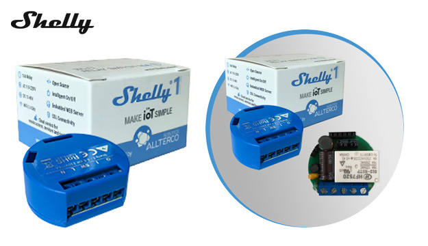 shelly-1